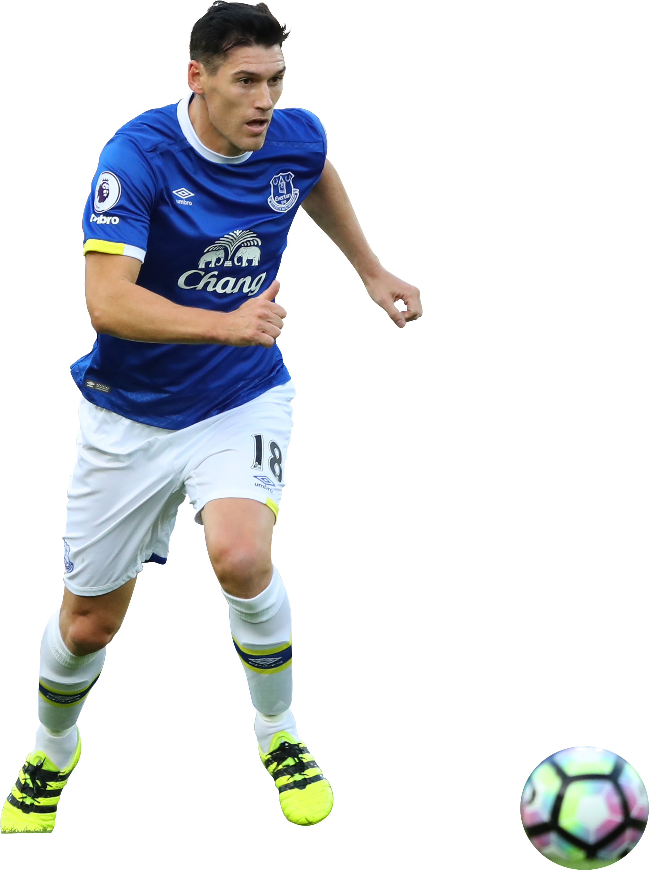 Gareth Barry render