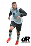 Gary Hooper football render