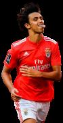 Joao Felix football render