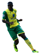 Sebastien Bassong football render