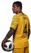 Tim Cahill football render