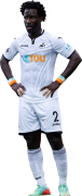 Wilfried Bony football render