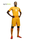 Yaya Toure football render
