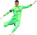 Fernando Muslera football render