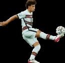 João Felix football render
